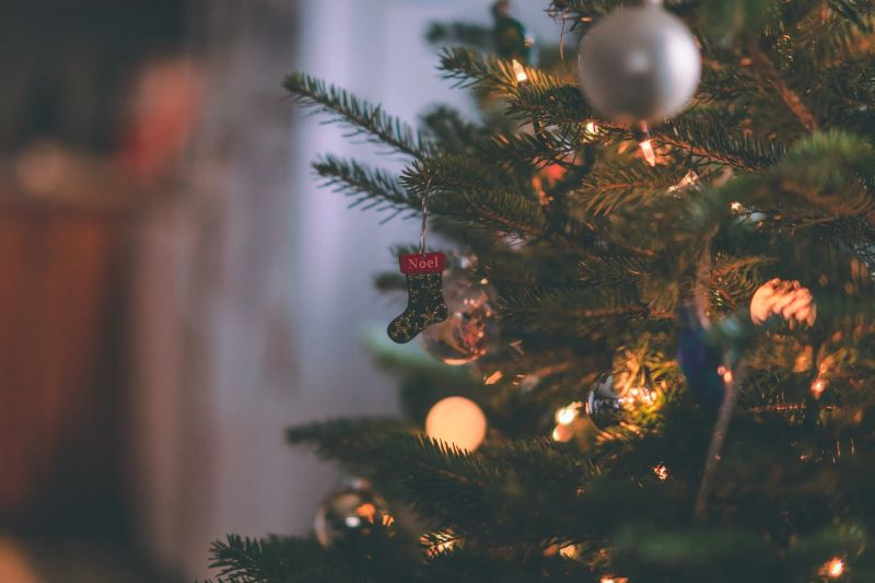 Oceanic Prelit Christmas Trees Theme